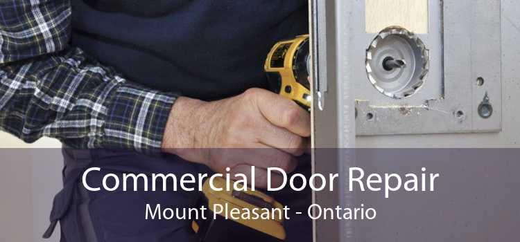 Commercial Door Repair Mount Pleasant - Ontario