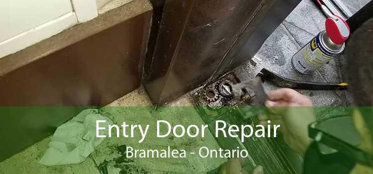 Entry Door Repair Bramalea - Ontario