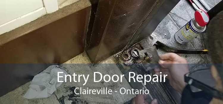 Entry Door Repair Claireville - Ontario