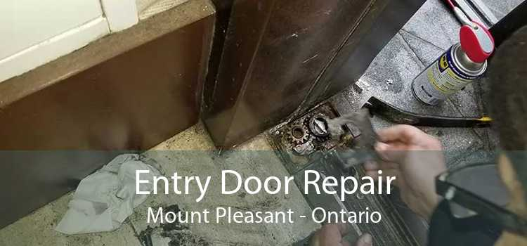 Entry Door Repair Mount Pleasant - Ontario