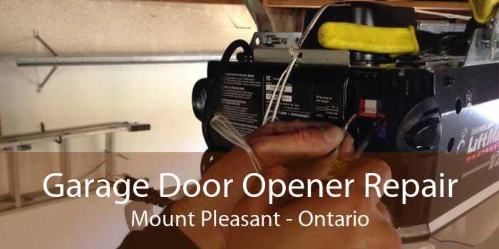 Garage Door Opener Repair Mount Pleasant - Ontario