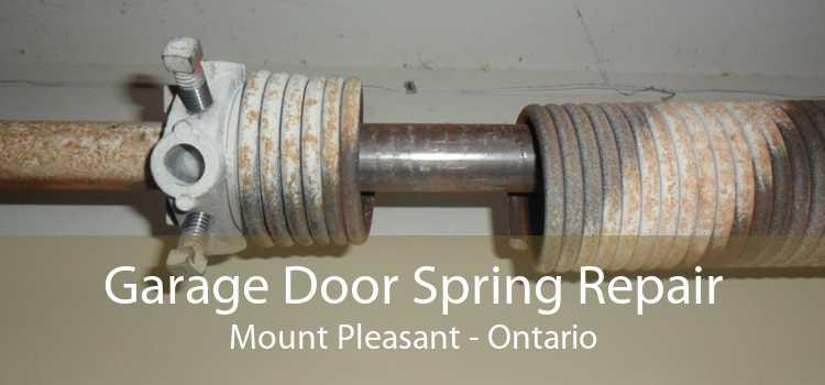 Garage Door Spring Repair Mount Pleasant - Ontario