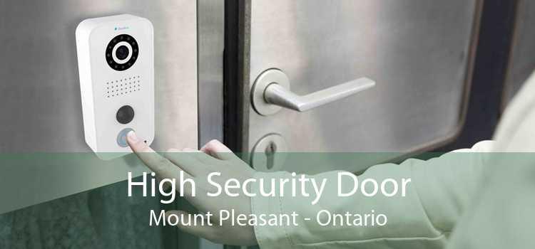 High Security Door Mount Pleasant - Ontario