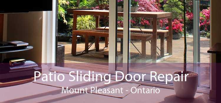 Patio Sliding Door Repair Mount Pleasant - Ontario