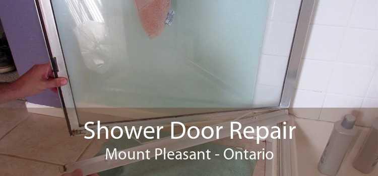 Shower Door Repair Mount Pleasant - Ontario